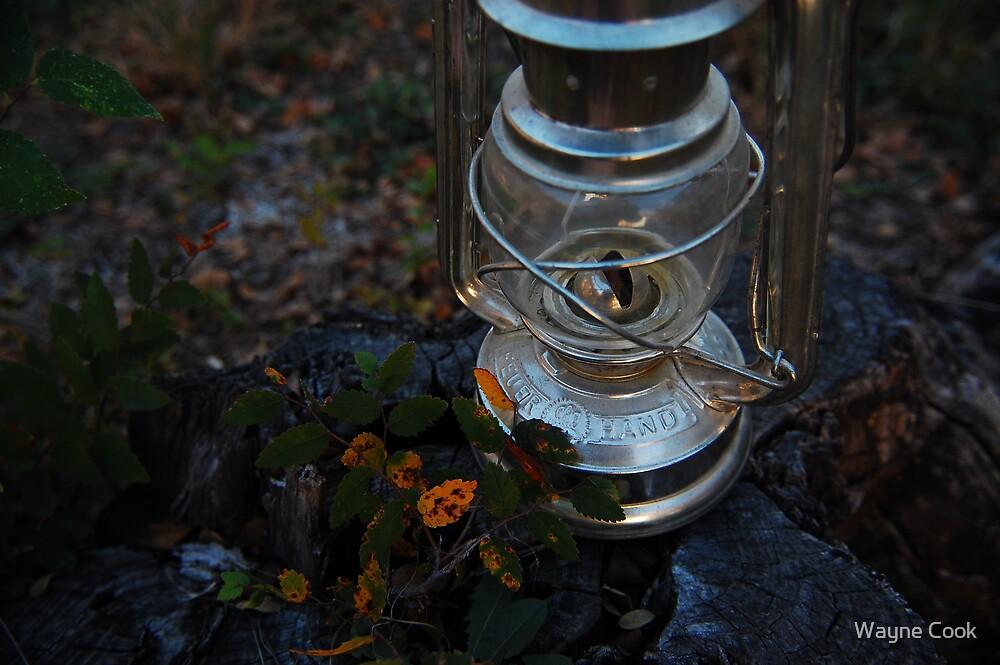 Put the Lantern Down! Kiss me!! by Wayne Cook