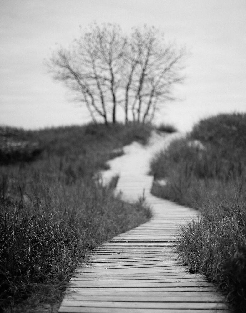 Post Modern Pathway by Kurt Kamka