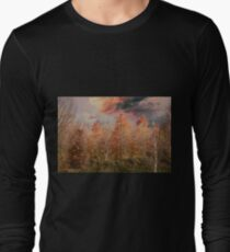 colorful trees in park in autumn T-Shirt
