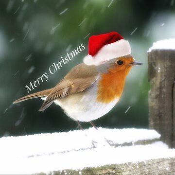 Merry Christmas 2018 by kevsphotos2008