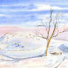 Snow On Curber Edge by ssalt