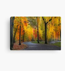 Ensconced in Autumn Canvas Print