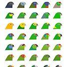 Amazon Parrots by Scott Partridge