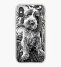 Brown Roan Italian Spinone Puppy Dog iPhone Case