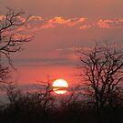 Sunset in Motswari by Carisma