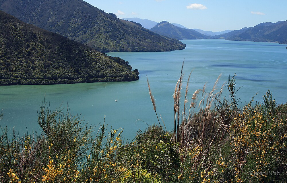 Queen Charlotte Sound New Zealand by Marlin1956