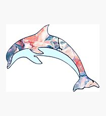 Paint Mixed Dolphin Design Photographic Print