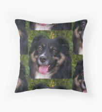 australian shepherd black tri Floor Pillow