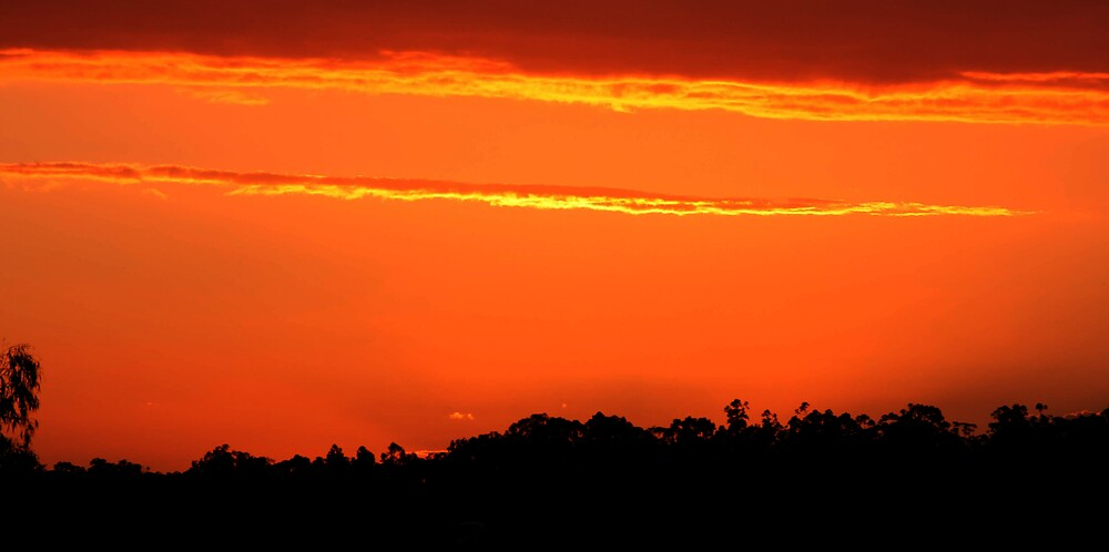 November Sunset by Vaughan Whitworth
