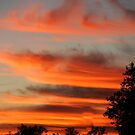 SoCal Sunset 11/23 by Chet  King