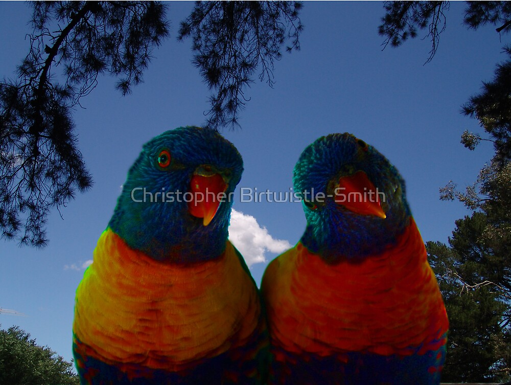 Lorrie and Lorraine by Christopher Birtwistle-Smith