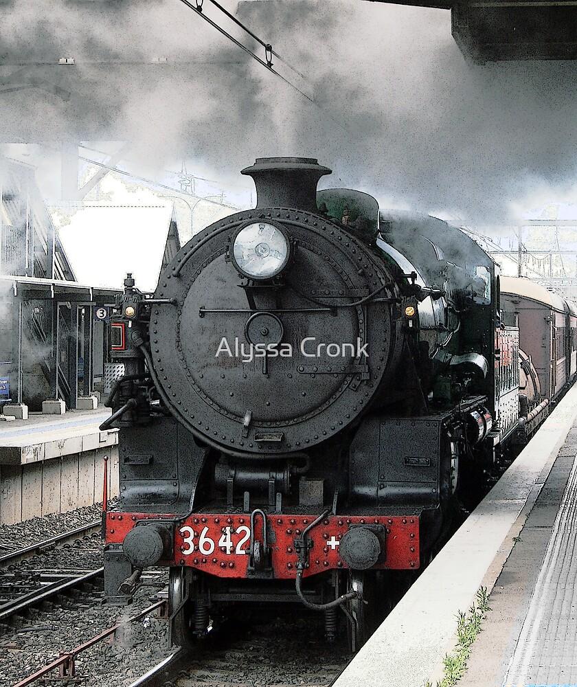 Fishers Ghost Steam Train by Alyssa Passlow