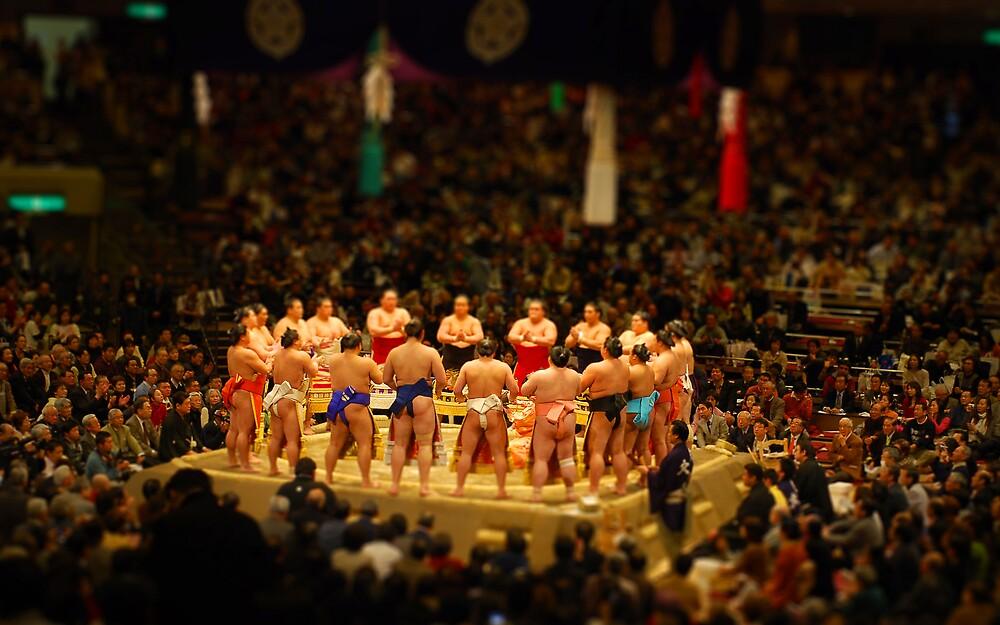Miniature Sumo by daveloh