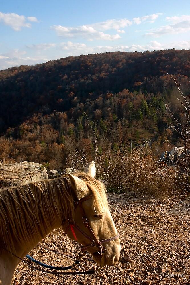 Water Creek Canyon Trip by KSkinner