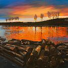 Sunset Logs - Michael Dyer by Rachelle Dyer