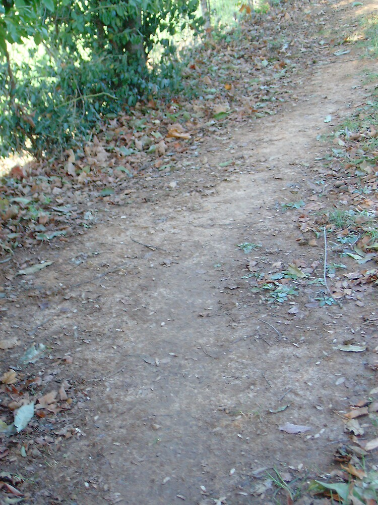 dirt road by kroniclove