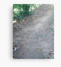 dirt road Metal Print