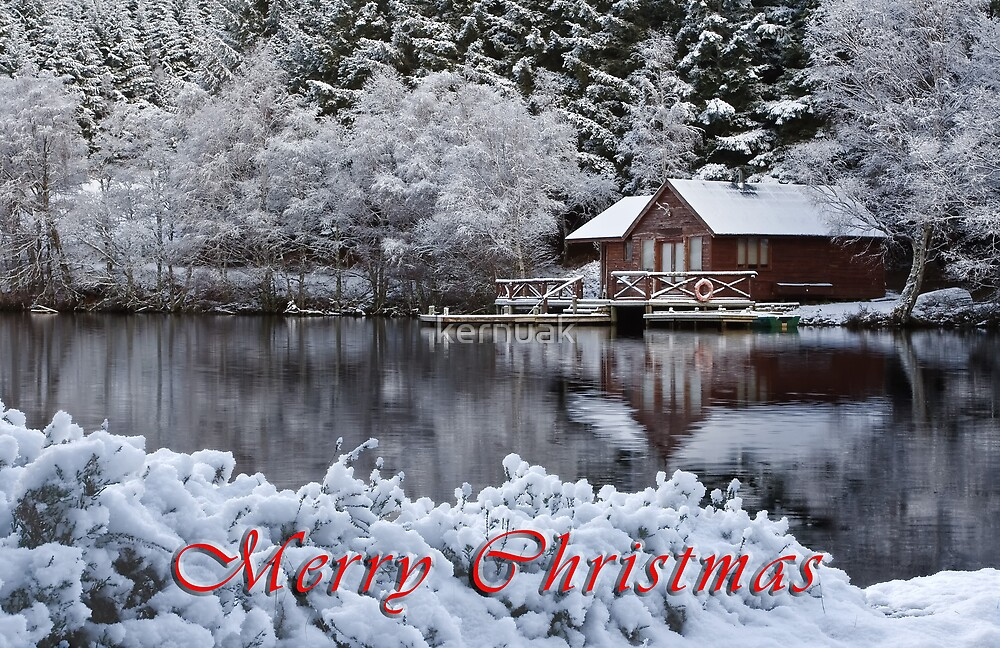 Christmas Still by kernuak
