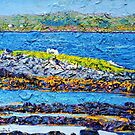 Bertraghboy Bay 3, Ireland by eolai