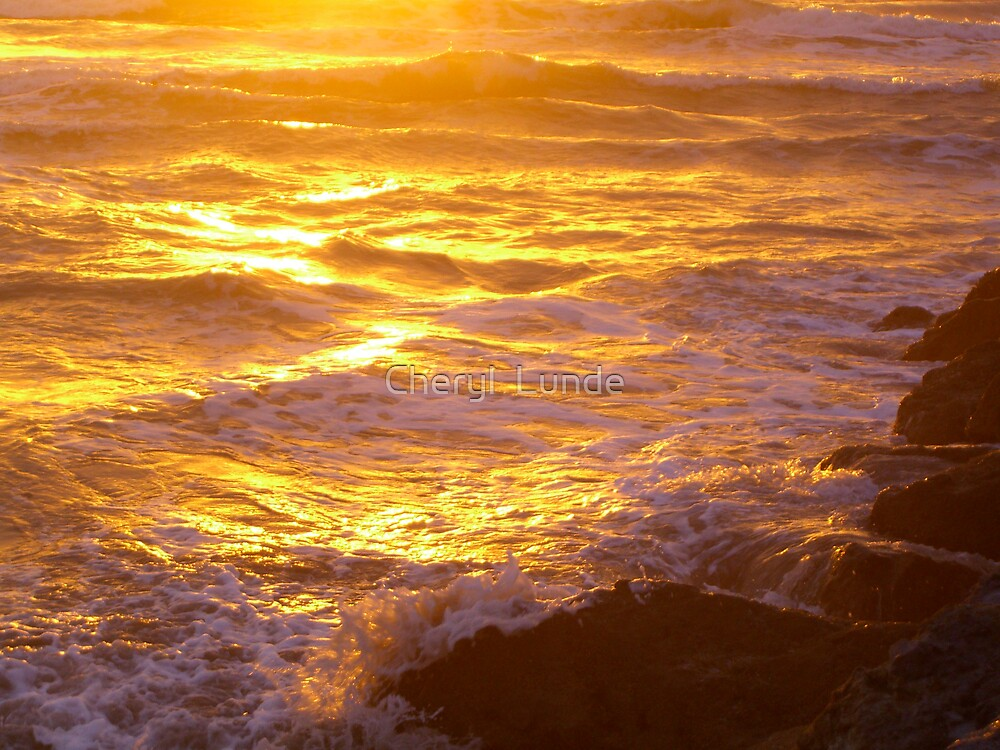 Fire and Water by Cheryl  Lunde