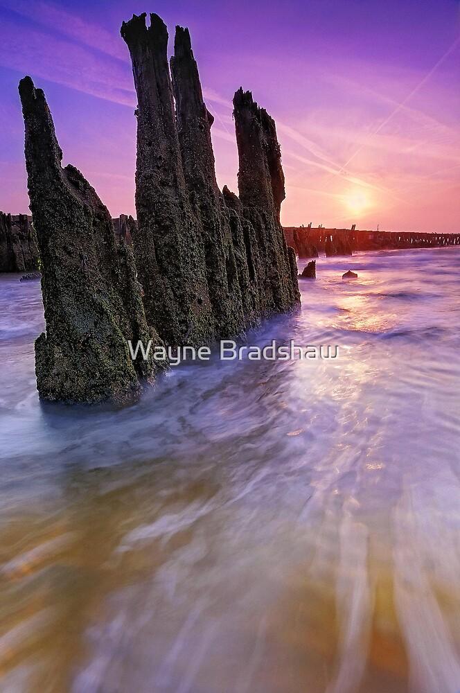 Walberswick Beach Suffolk 1. by Wayne Bradshaw