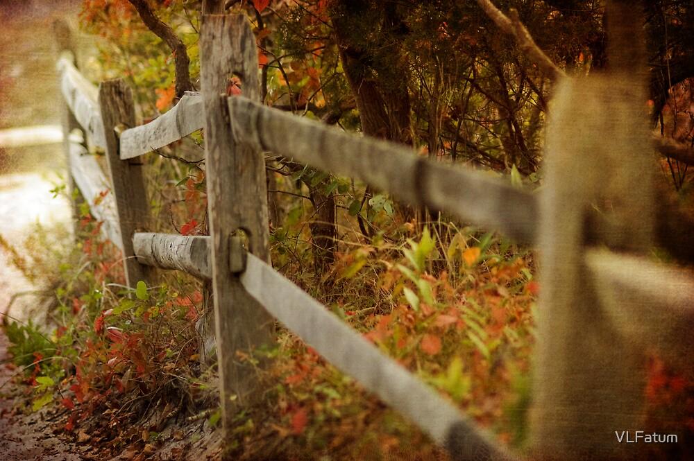Fall Fence by VLFatum