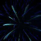Fireworks 3 by Ann Heffron