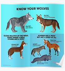 Know Your Wolves Poster