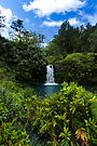 Another Maui waterfall by photosbyflood