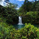 Another Maui waterfall by photosbyflood