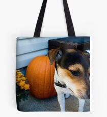 jack/rat terrier Tote Bag
