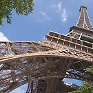 The Eiffel Tower, Paris, France by Andrew Duke