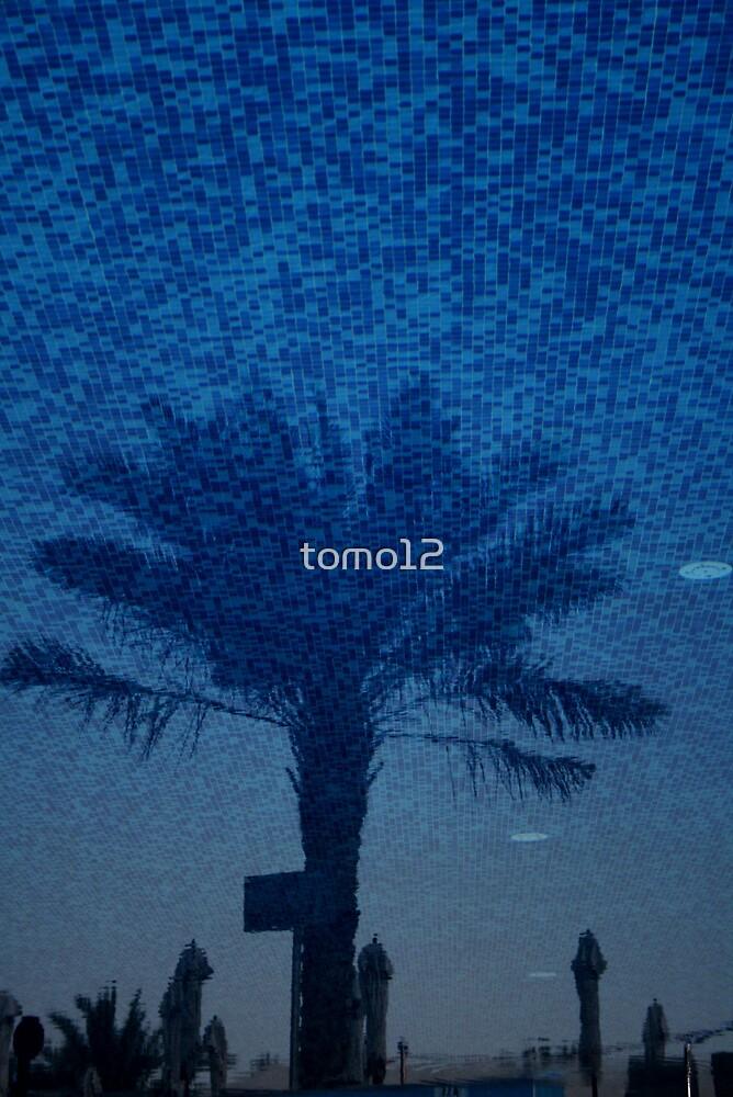 palm by tomo12