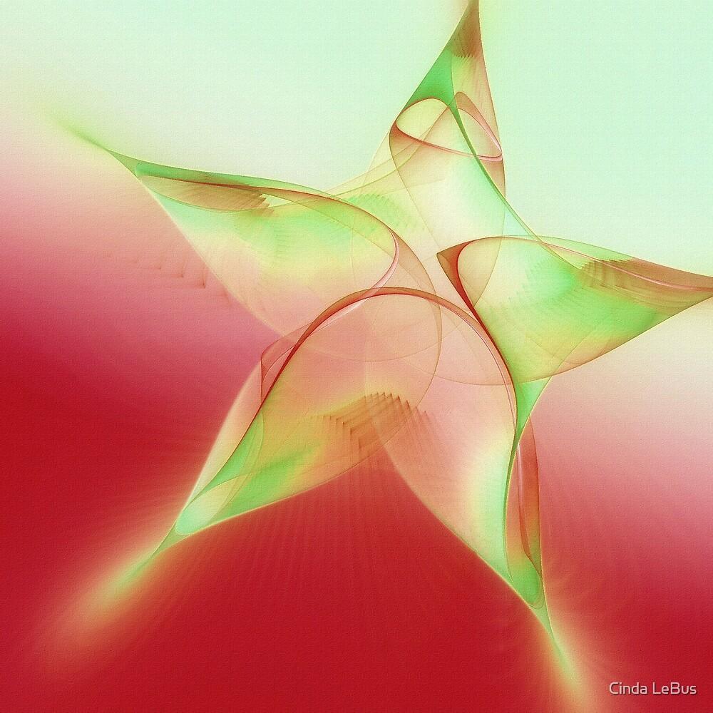 Christmas Star by Cinda LeBus
