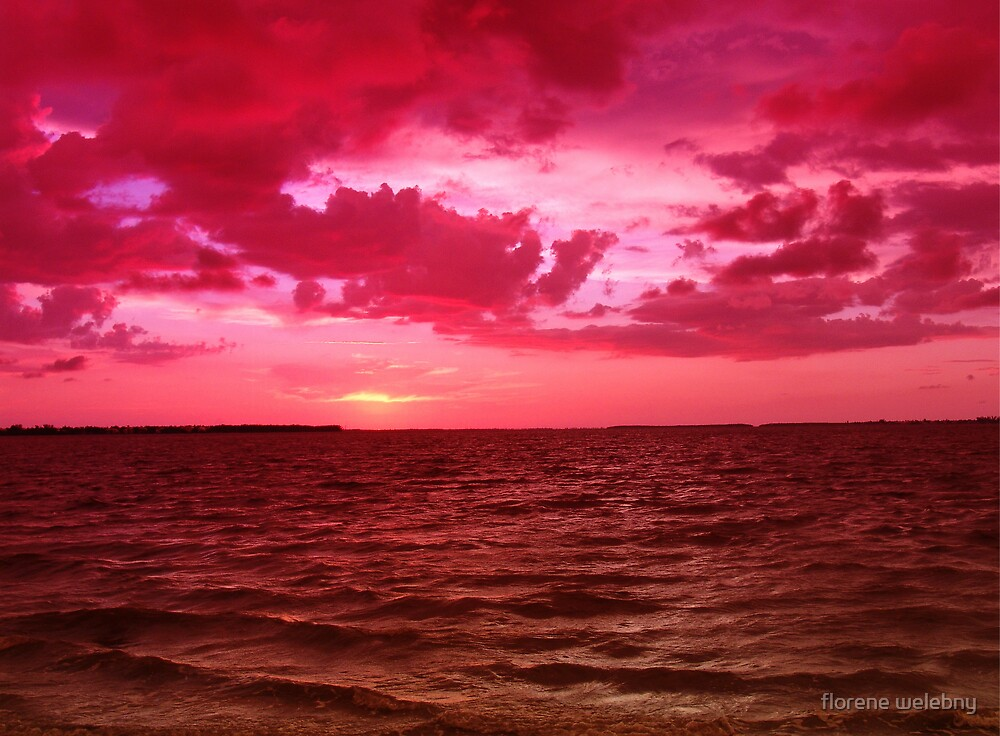 Day Ends In Fuschia by florene welebny