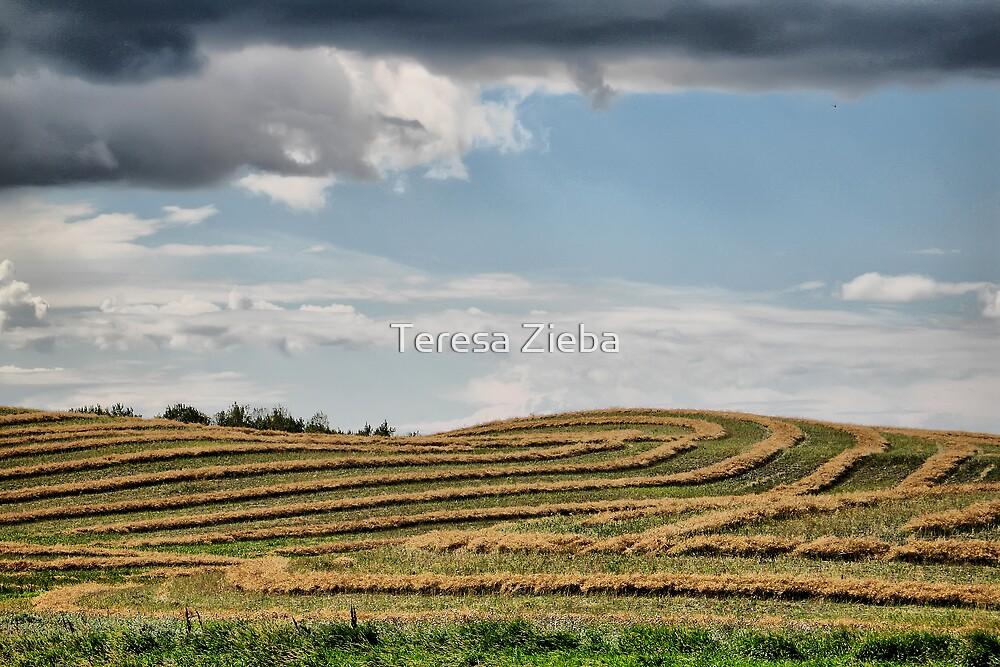 Gentle Hills by Teresa Zieba