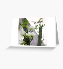 Princess of the Night - Blooming in Abundance Greeting Card