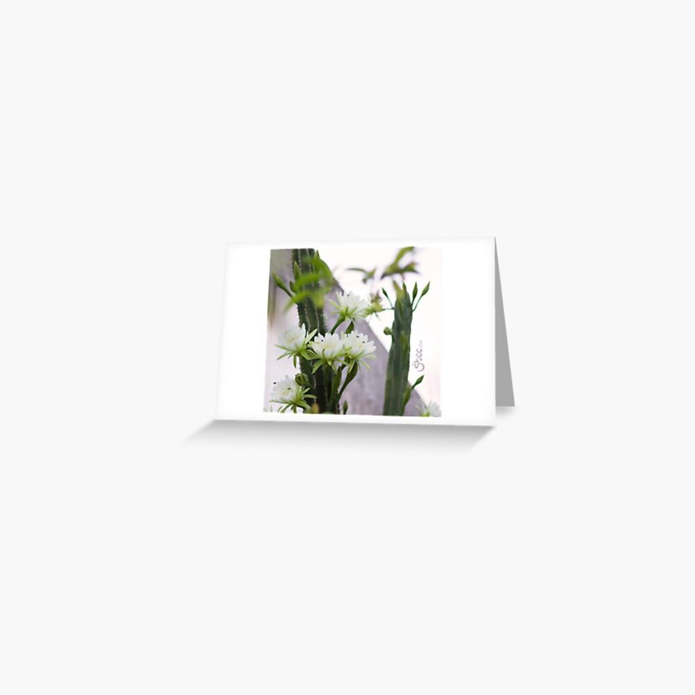 Princess of the Night - Blooming in Abundance Greeting Card