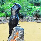 Black Cockatoo by Margaret Stevens