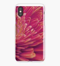 Macro photo of red gerbera flower. iPhone Case/Skin