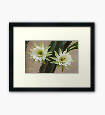 Princess of the Night - Twin Blooms with Bees Framed Print