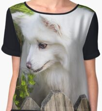 White Spitz In The Green Garden Women's Chiffon Top