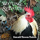 Small Town Tales by WatlingBates