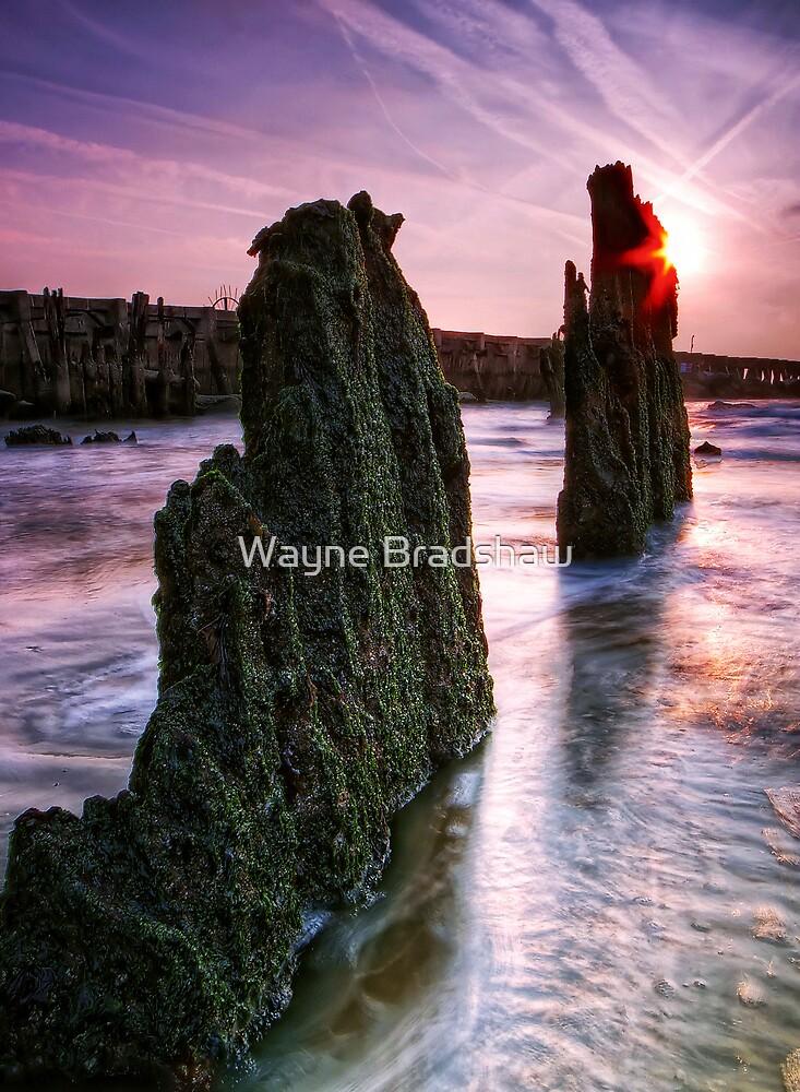 Walberswick Beach Suffolk 3. by Wayne Bradshaw