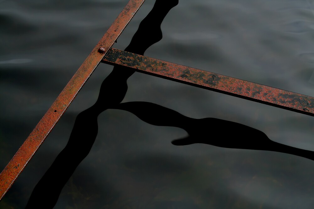 Iron In The Water by Anthony Thomas