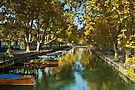 Annecy - Autumn colors over the channel by Patrick Morand