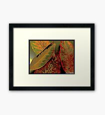flawed but beautiful Framed Print