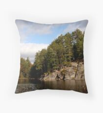 In algonquin park 1 Throw Pillow