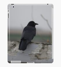 Raven on a Fence iPad Case/Skin