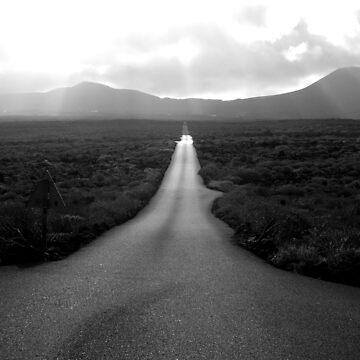 Desert road by viba